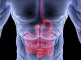 Gastroenterologia ed Endoscopia Digestiva