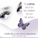http://okmedicina.it/images/cover/group/77/thumb_459723075047dd9a44a19b25993eca1f.jpg