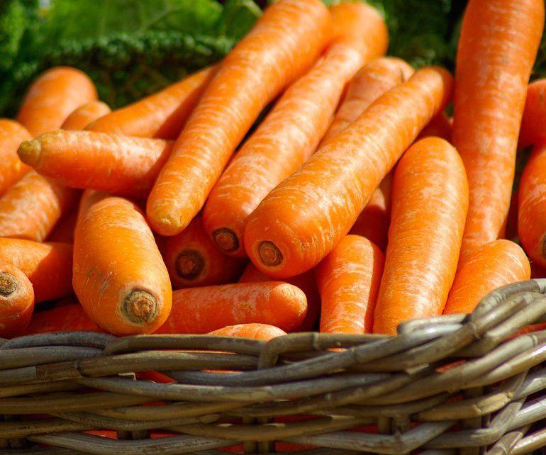 Le carote sono un ortaggio ricco di benefici per la salute.<br />Alcuni studi ne hanno sottolineato l'effetto positivo sulla fertilità maschile. Gli antiossidanti contenuti al loro interno, infatti, migliorerebbero la qualità degli spermatozoi.<br />Il betacarotene, come noto, da un lato offre alla pelle un aspetto più rilassato e sano, dall'altro favorisce la produzione di melanina, sostanza che rende più facile l'abbronzatura d'estate proteggendo al contempo la pelle dai raggi ultravioletti.<br />Come forse spesso abbiamo sentito dire alle nostre nonne, le carote poi fanno bene alla vista. Non è un luogo comune, ma l'effetto della vitamina A.<br />Infine, l'alta concentrazione di vitamine e fibre le rende utili per il buon funzionamento dell'intestino e per la riduzione del rischio di insorgenza del cancro del colon.