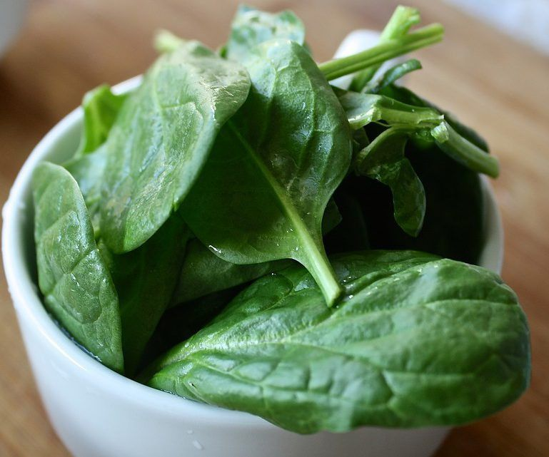 Gli spinaci hanno molteplici effetti positivi sull'organismo. Un complesso contenuto al loro interno, i Tilacoidi, ha l'effetto di rallentare la digestione dei grassi e quindi di saziare. Una volta introdotti nell'intestino crasso, gli ormoni della sazietà vengono rilasciati e inviati al cervello. <br />L'effetto dei Tilacoidi è riconducibile a diversi principi attivi. Il composto contiene infatti centinaia di sostanze: galattolipidi, proteine, vitamina A, E, K, antiossidanti, beta-carotene, luteina.<br />Gli spinaci, inoltre, possiedono al loro interno l'amminoacido tirosina, una sostanza che garantisce la produzione di due importanti neurotrasmettitori, la dopamina e la norepinefrina. I nitrati inorganici all'interno degli spinaci e di altre verdure a foglia verde produrrebbero un effetto di miglioramento delle prestazioni muscolari.<br />Gli spinaci vantano anche una buona percentuale di acido folico, elemento essenziale per le donne in gravidanza e non solo.