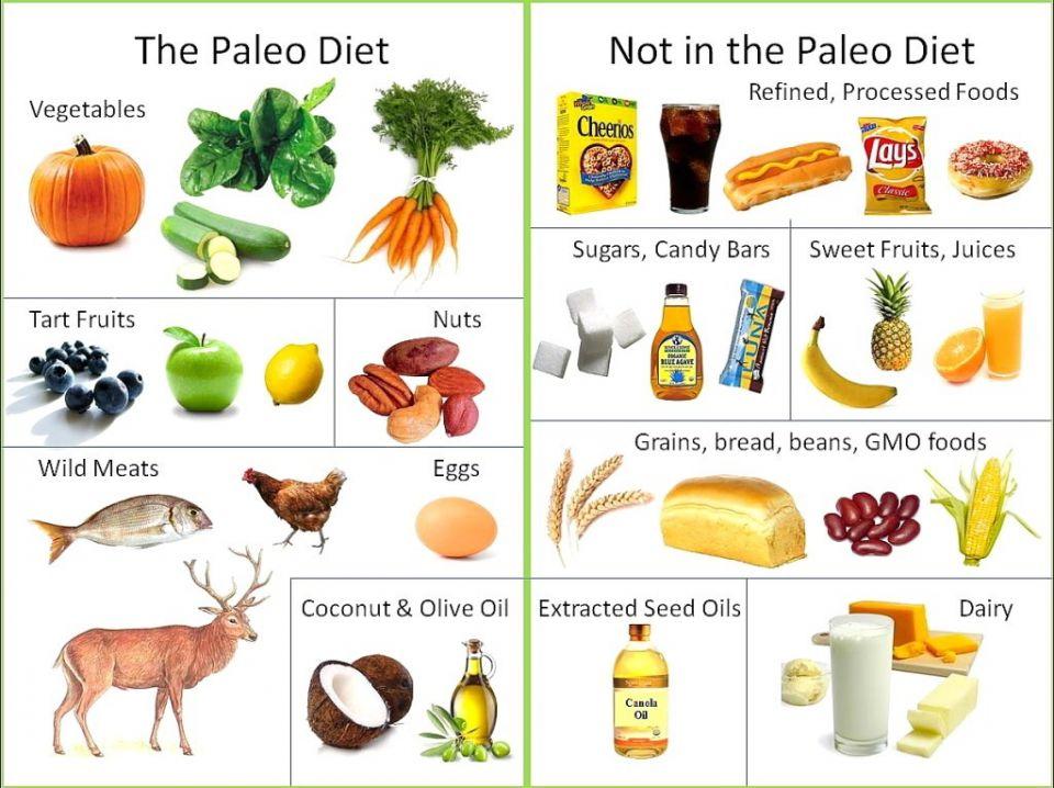 C'è un regime alimentare specifico in grado di aiutare le donne in menopausa in particolare quelle in sovrappeso oppure obese. Si tratta della paleo-dieta anche detta dieta delle caverne, un regime alimentare ispirato a quello utilizzato dai nostri antenati della preistoria, prima dell'avvento dell'agricoltura. La base della paleo-dieta è costituita da alimenti quali carne magra, uova, noci, frutti di bosco, verdure. A questi alimenti si possono aggiungere olio di oliva, quello di colza e l'avocado come grassi aggiuntivi. Vanno assolutamente evitati i latticini,cereali, sali, grassi e zuccheri raffinati. L'effetto è la perdita di peso soprattutto a livello addominale e il miglioramento dei valori degli acidi grassi con conseguente riduzione del rischio di diabete e malattie cardiovascolari. <br />www.italiasalute.it