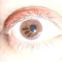 http://www.okmedicina.it/images/groupphotos/69/75/thumb_9be22e9d30a68333aaf275e7.jpg
