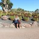 2015-01-03 cactus