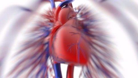 cuore-neonati