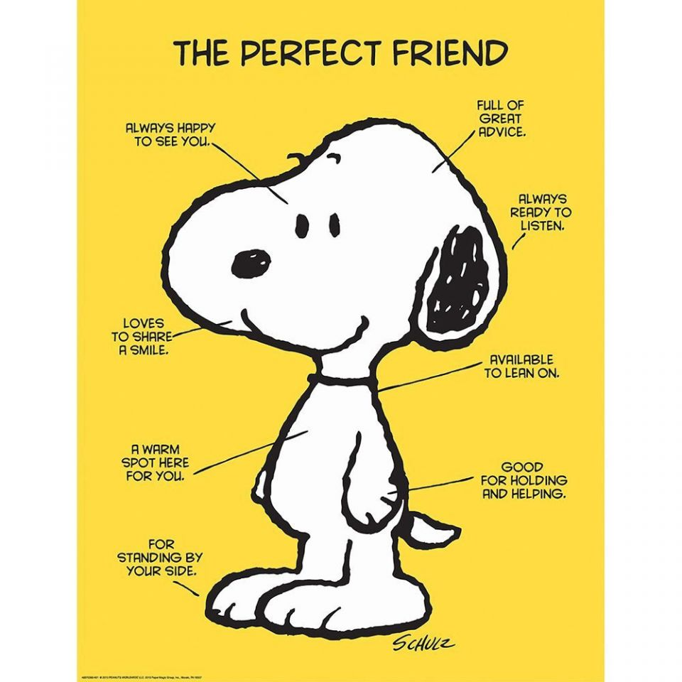 Eureka-Peanuts-The-Perfect-Friend-snoopy-wall-art-newest-customized-pattern-Poster-large-unique-sticker-wallpaper