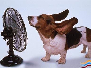 caldo-record-settembre-2014