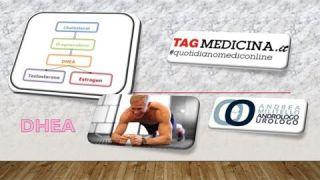 Il DHEA, l'ormone che migliora la massa muscolare e la densità ossea